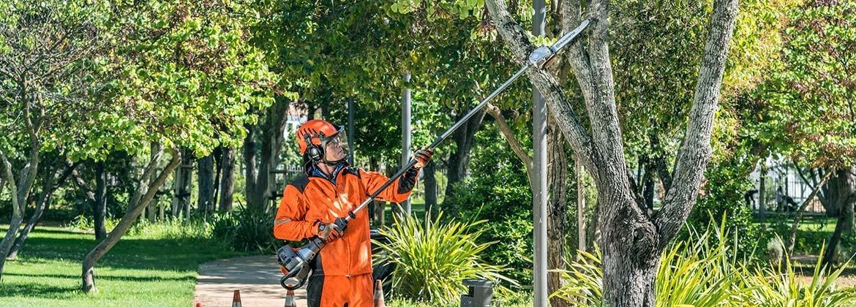 Podadora de altura - Maquinaria forestal online