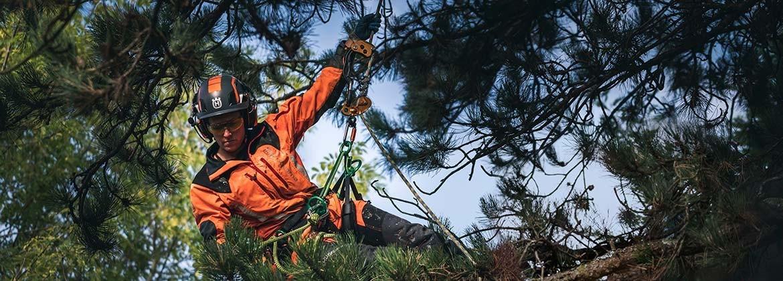 Ropa, herramientas y útiles – Forestal